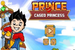 Prince and Caged Princess